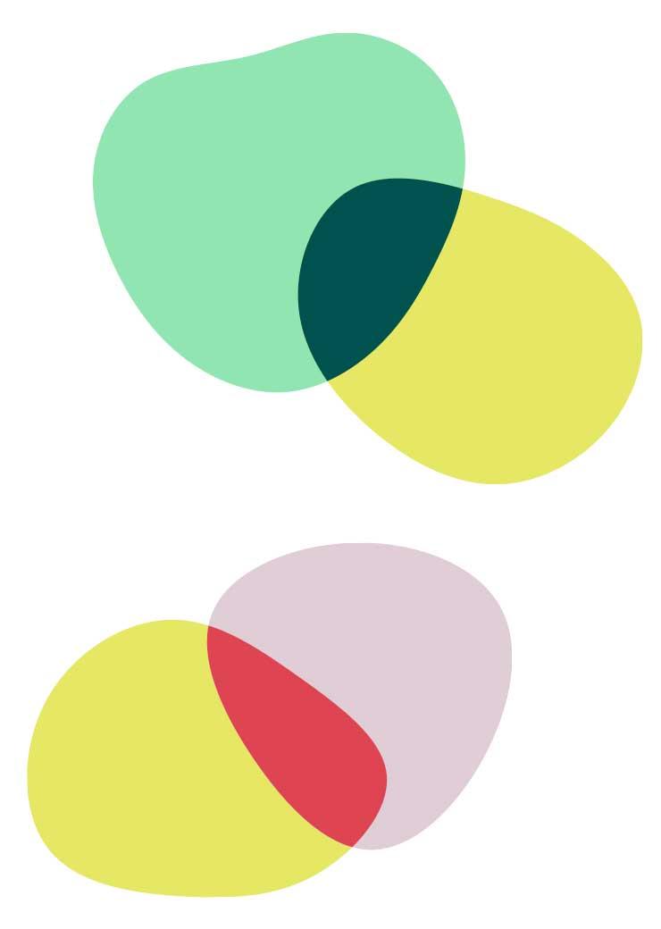 ZN Case: Skoove App, Corporate design Elemente organische Farbfläche